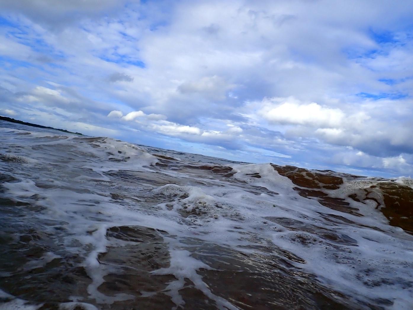 2013, HR Wallingford, Inch Cape, Metocean and Coastal Processes